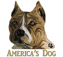 American Pit Bull Terrier - America's Dog Photographic Print