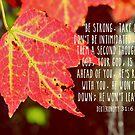 Deuteronomy 31:6 by Kathleen Daley
