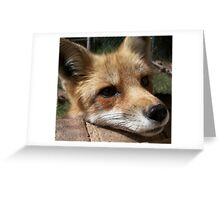 Rusty the Red Fox Greeting Card