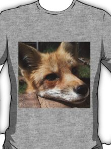 Rusty the Red Fox T-Shirt