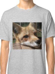 Rusty the Red Fox Classic T-Shirt