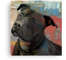 Pit Bull Piglet in Paint Canvas Print