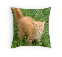 Cute Jinja Moggy Throw Pillow