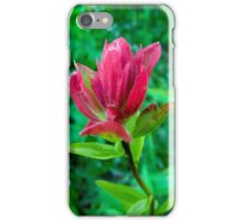 Wildflower Paintbrush iPhone Case/Skin