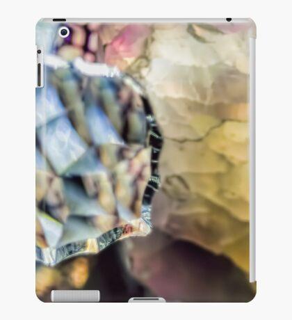 Captured in a Gem iPad Case/Skin