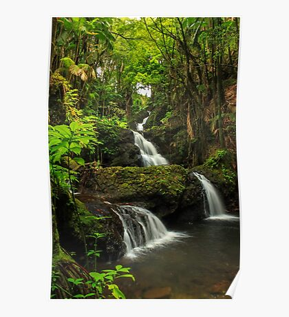 Onomea Falls Poster