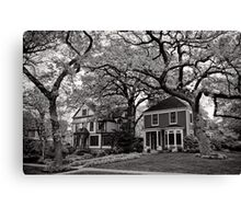 Side by Side, Oak Park Chicago Canvas Print
