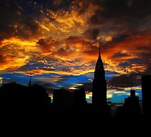Golden Sunset Indigo Sky by Miriam Danar
