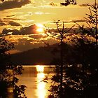Vancouver Island BC Canada by AnnDixon