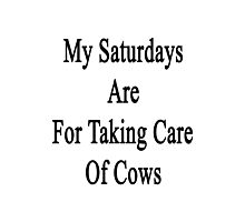 My Saturdays Are For Taking Care Of Cows  Photographic Print