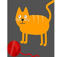 Funny Lovely Vector Graphic Cat For Animal Kitty Lovers Photographic Print