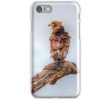 Who ruffled your feathers? iPhone Case/Skin