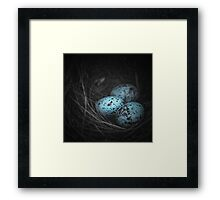 Nest of 3 Framed Print