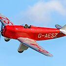 Chilton D.W.1 G-AESZ/29 by Colin Smedley
