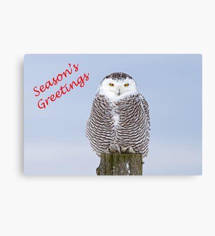 Christmas Snowy owl Canvas Print