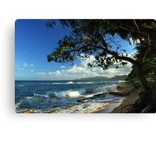 The Beach At Kapaa Canvas Print