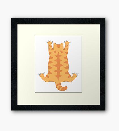 Funny Fat Cat Hanging Down Cute Hug Love  Framed Print
