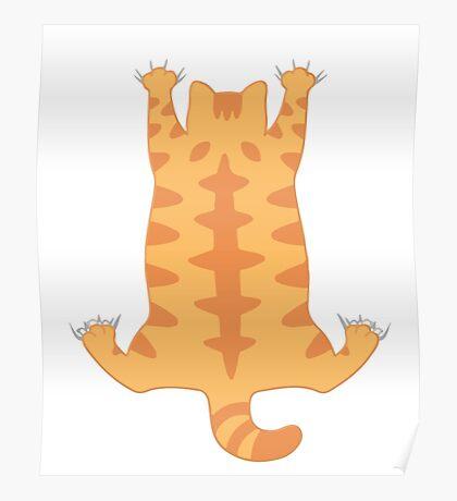 Funny Fat Cat Hanging Down Cute Hug Love  Poster