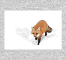 Red Fox - Algonquin Park Baby Tee
