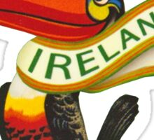 Guinness Irish Rugby Toucan Sticker