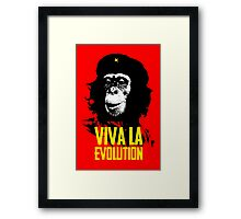 Viva la Evolution Framed Print