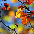 """"""" The Leaves That Were Green """" by Richard Couchman"""