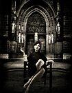 The Widow... by Karen  Helgesen