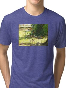Curlews and young at Wonga Beach, North  Queenland Tri-blend T-Shirt