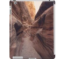 Another Path iPad Case/Skin