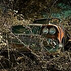 Abandoned and Overgrown - 1958 Chevy Impala by mal-photography