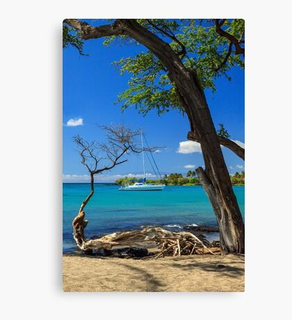 A Sailboat In Anaehoomalu Bay Canvas Print