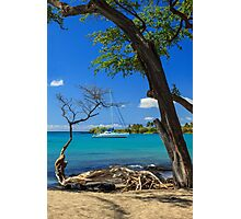 A Sailboat In Anaehoomalu Bay Photographic Print