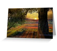Radiant Vineyard Greeting Card