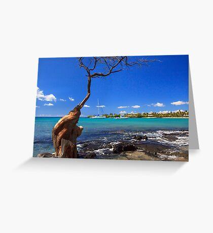 Boats At Anaehoomalu Bay Greeting Card