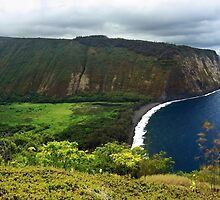 Waipio Valley by James Eddy