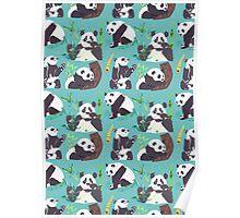 Whole Lotta Panda Poster
