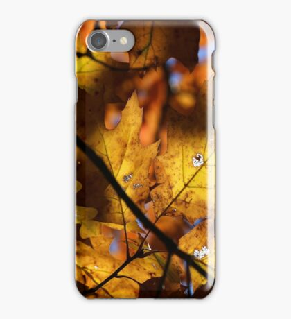 Fall Mixture 10 iPhone Case/Skin