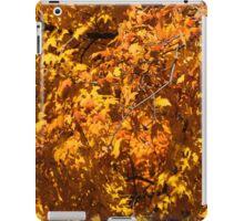 Fall Orange 20 iPad Case/Skin