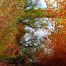 Autumn Reflections in Caldwell, Idaho by Diane Arndt