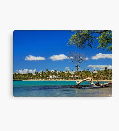 Anaehoomalu Bay Canvas Print