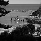 Picnic At Horse Shoe Bay by Ben Loveday