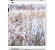 Frosted Pond iPad Case/Skin