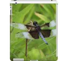 Show of wings iPad Case/Skin