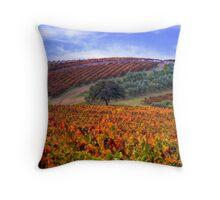 Vineyard Color Throw Pillow