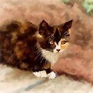 Calico Kitten by Lois  Bryan
