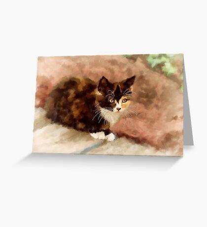 Calico Kitten Greeting Card