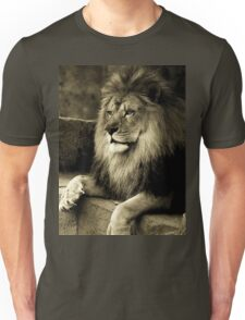 Hall of the mountain king T-Shirt