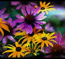 Cone Flower Flair by DiedrichDesign
