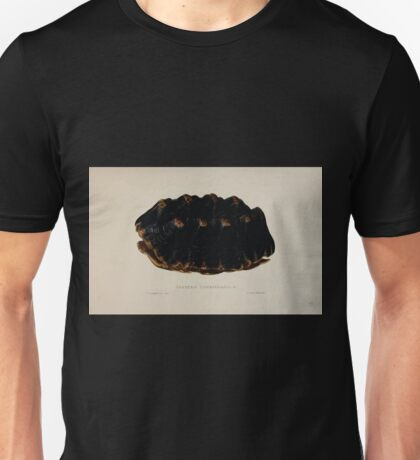 Tortoises terrapins and turtles drawn from life by James de Carle Sowerby and Edward Lear 006 Unisex T-Shirt