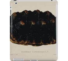 Tortoises terrapins and turtles drawn from life by James de Carle Sowerby and Edward Lear 006 iPad Case/Skin